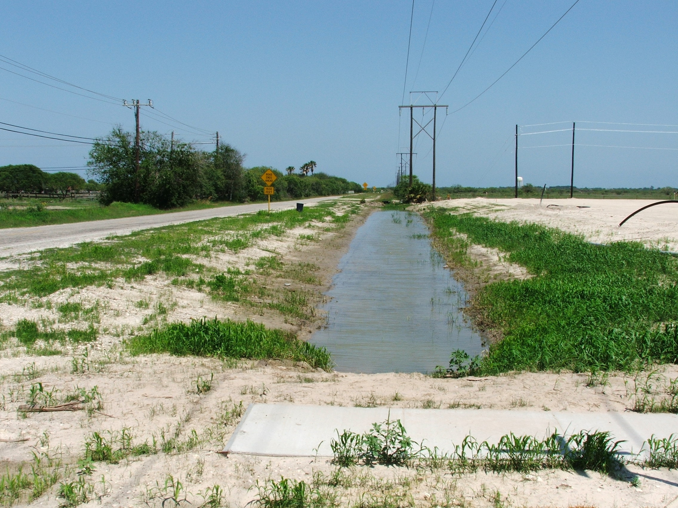 Holly Road Ditch Initial grass 2