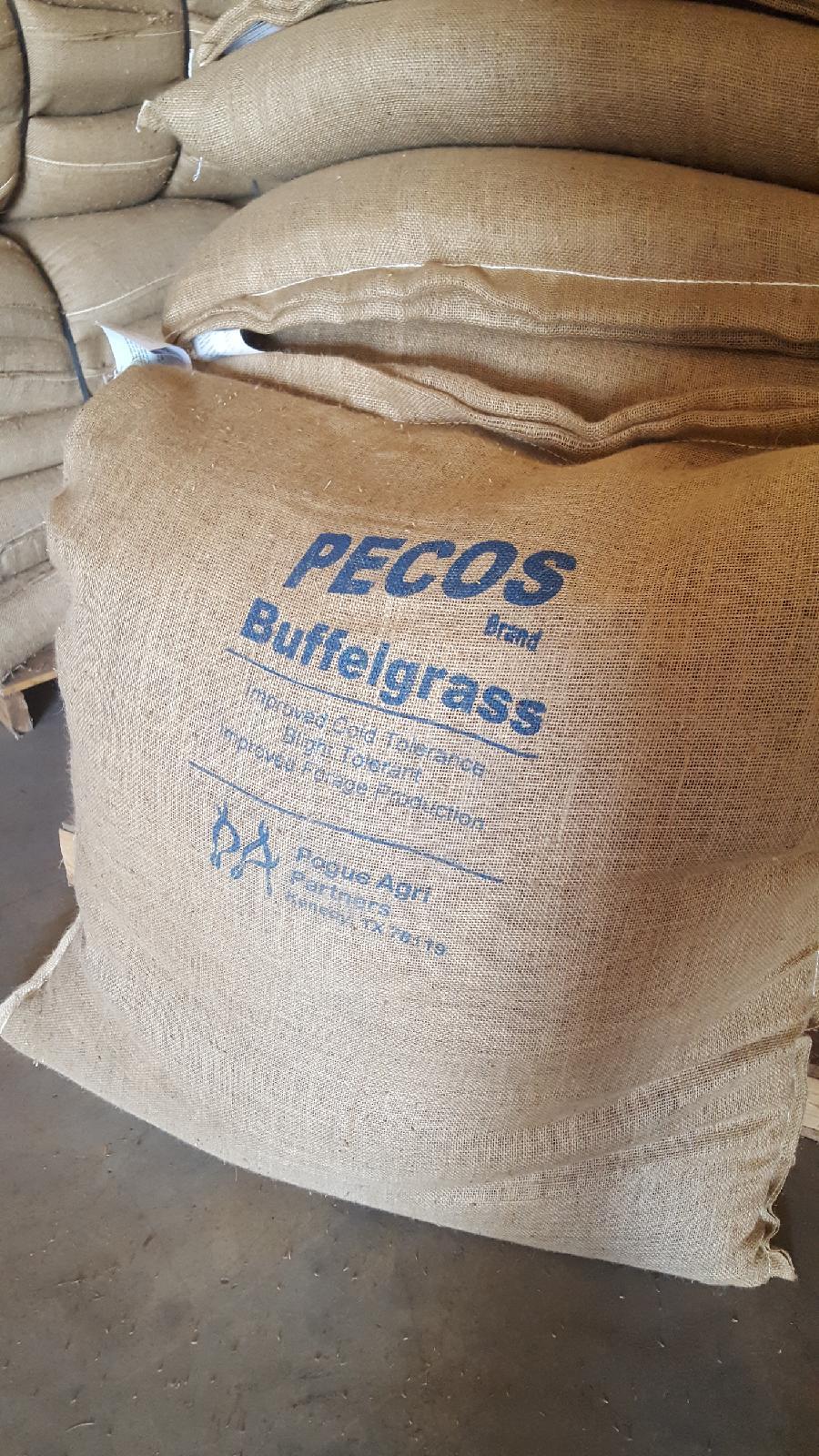 Buffel Pecos 174 Brand Buffel Grass Seed Company